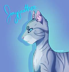 Jayfeather by dingo359