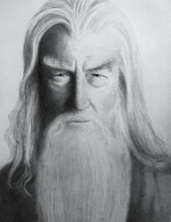 Gandalf - finished by Kogle