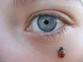 Ladybug + Eye 1 by Stickfishies-Stock
