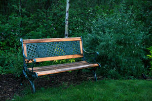 Bench in Nature 1 by Stickfishies-Stock