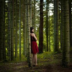 forest by nurtanrioven