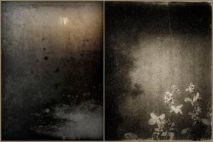Romantic Interlude by Poromaa