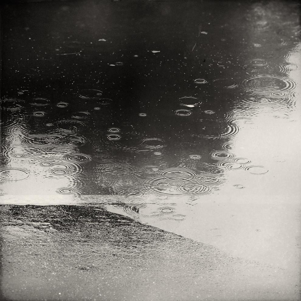 Shoreline by Poromaa