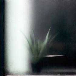 Still-Life by Poromaa