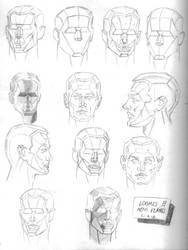Loomis Head Chart by Raius1