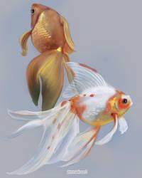 Goldfish by stonesbreaak