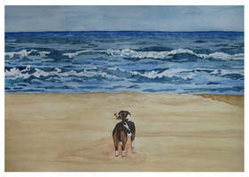 The Dog and the Sea II by agataylor