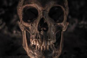 my skull by ennead999