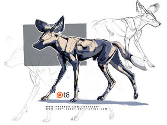 Patreon - African Wild Dog sketch 09 by T-Eight