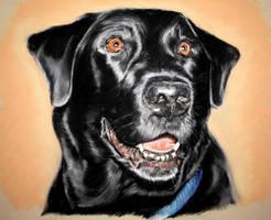 Pastel PJ Dog by BTBArtist