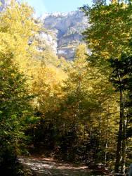 Mountains of Aragon - Spain by ferxi