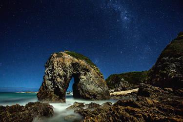 Horsehead Rock by Sun-Seeker