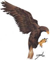 Ravenclaw by Devil-Berserk