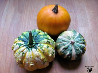 Pumpkins for decorating  by BlackCatArtDA