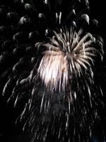 Fireworks 2010 - 7 by Zelandeth
