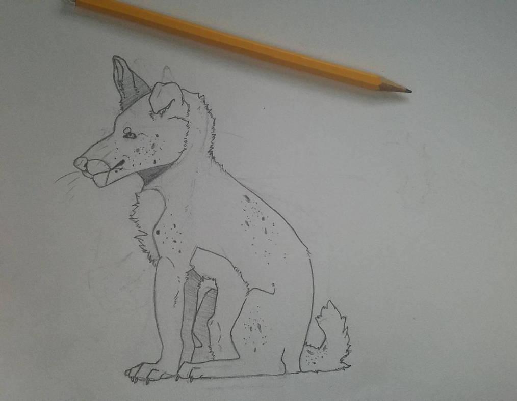 Dog by flockofidiots