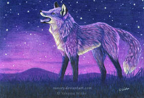 Stargazer - Red Fox by Vawie-Art