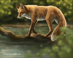 Walking on Water by Vawie-Art