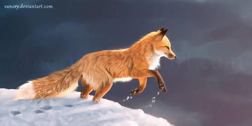 Jump by Vawie-Art