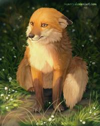 Grumpy Fox by Vawie-Art