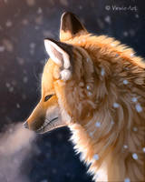 Cold Air 2 by Vawie-Art