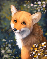 Young Fox by Vawie-Art