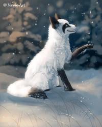 Snowcatcher by Vawie-Art
