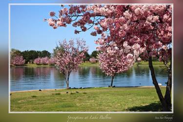 Springtime at Lake Balboa by Mac-Wiz