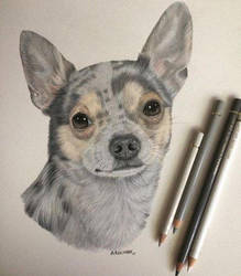 Tiberius-colored pencil by xx-ashley