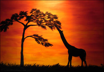 African Sunset by Nioell