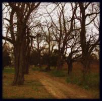 cemetery road by Slopjockey