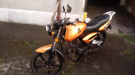 Lombax Motorbike 2 by LMcIgarets