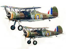 Gloster Gladiator by temma22