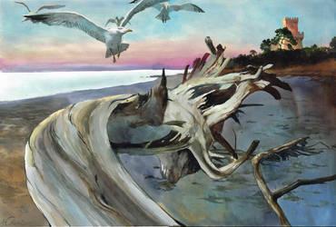 Pineto seagulls by VincentPompetti