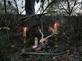 Samhain by TTTDESELTTT