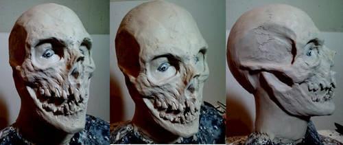 Skull2 by ChrisVennekamp
