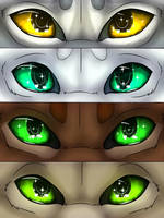 Warriors Eyes #2 by Goldenwing67