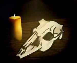 Skull by strazniksnu