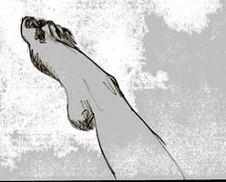 foot by blodwen