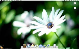 November 12 Desktop Screenshot by Salehhh