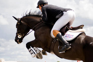 Black horse jumping by equinelovex