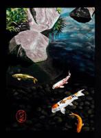Himeji Koi Pond by KidfromKzoo