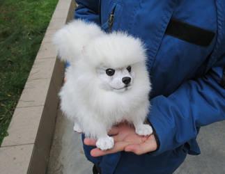 OOAK Pomeranian dog   ( by Vladimir Sukhanov ) by Sukhanov