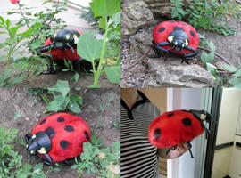 LadyBug ( by Vladimir Sukhanov ) by Sukhanov