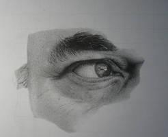 Armin Mersmann Portrait WIP 02 by Shouclak