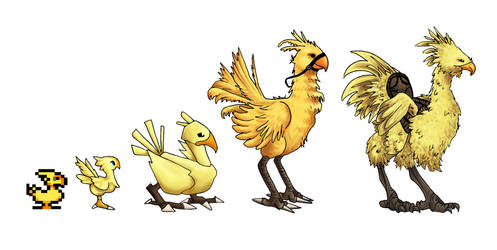 Chocobo Evolution by meganrenae-art