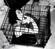 BOXED IN by castration