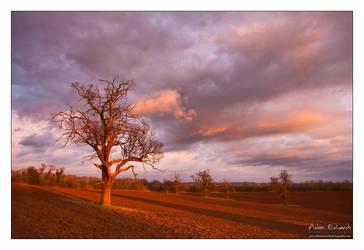 Stormy Shire III by Meowgli