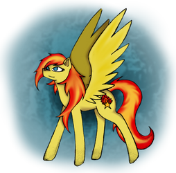Fire Star by catname
