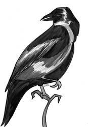 Raven by Reta-Rees